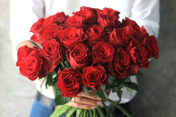 01-Why-Are-Roses-So-Popular-For-Valentines-Day-528431108_nattavutluechai-1024x683